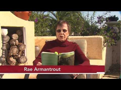 Weekly Poem: Rae Armantrout Reads 'Around'