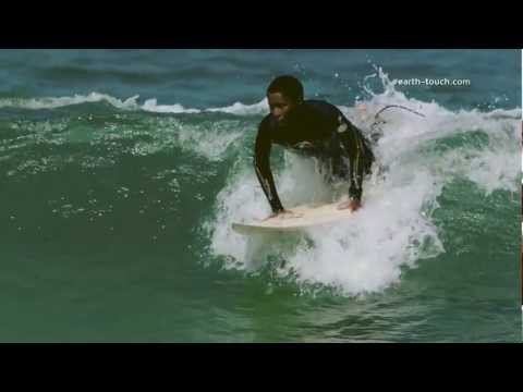 Summer Surf | WildWarp Episode 6