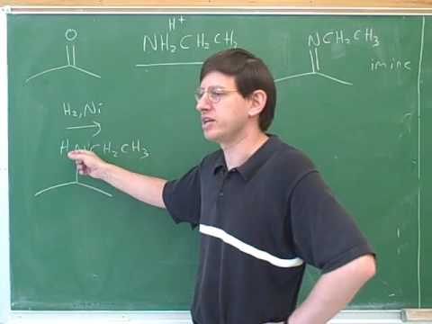 Organic chemistry: Introduction to amines (11)