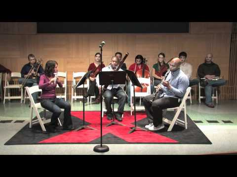 TEDxPeachtree - Atlanta Music Project - Teaching Artists