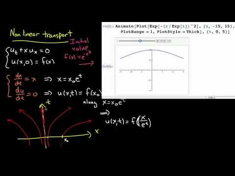 PDE 6 | Transport with decay and nonlinear transport