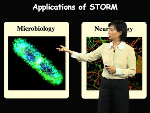 Xiaowei Zhuang (Harvard/HHMI) Part 2: Applications of Super-resolution STORM