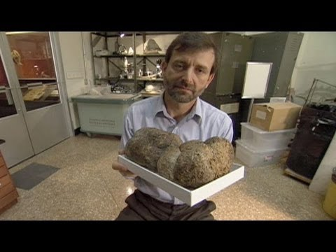 Smithsonian's Weirdest - Ball of Sloth Dung