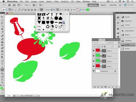 Photoshop CS5 - Custom Vector Shapes Part 1