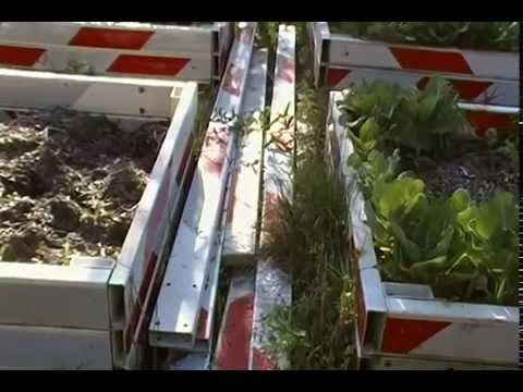 Raised Bed Gardening: Affordable, Redneck style -- or whatever.