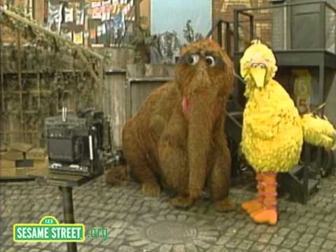 Sesame Street: Big Bird and Snuffy Get the Picture