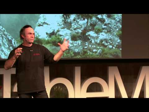 Playing in the urban wilds: Andy de Klerk at TEDxTableMountain