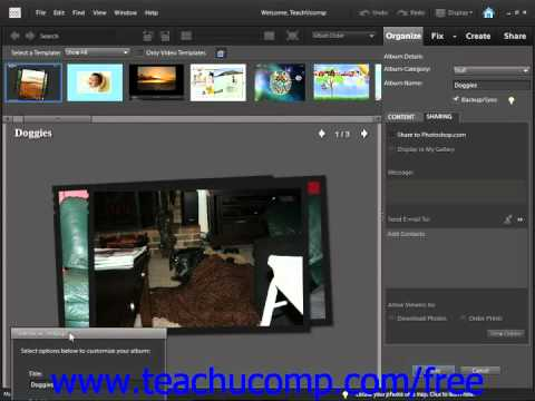 Photoshop Elements 9.0 Tutorial Creating Online Albums/Collections Adobe Training Lesson 2.7