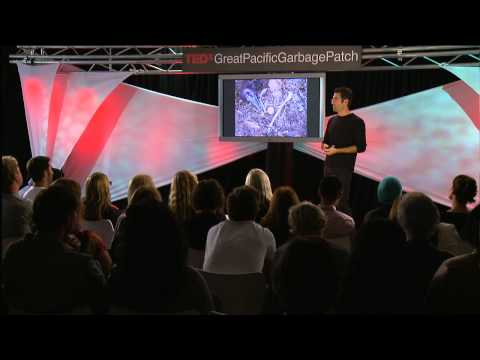 TEDxGreatPacificGarbagePatch - Chris Jordan - We Must Be The Change