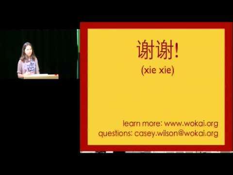 Wokai: Microfinance and the Future of China