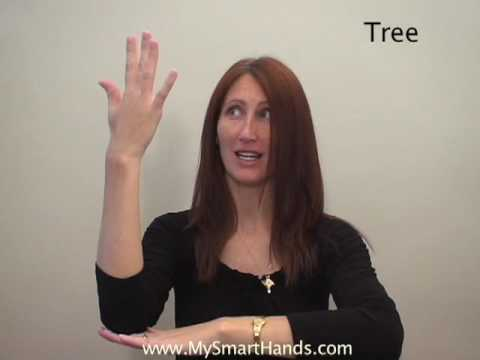 tree - ASL sign for tree