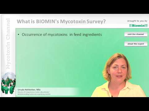 What is BIOMIN's Mycotoxin Survey?