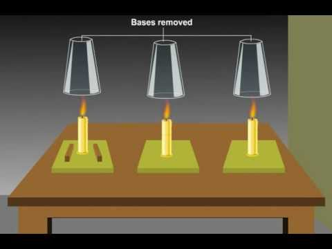 Oxygen is Necessary for Combustion - Class VIII Science Combustion and Flame Tutorials Online