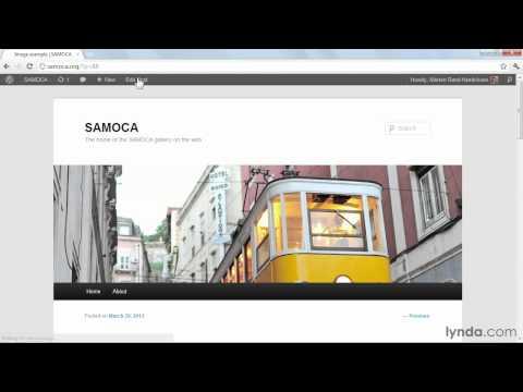 Understanding WordPress media settings and images sizes | lynda.com tutorial
