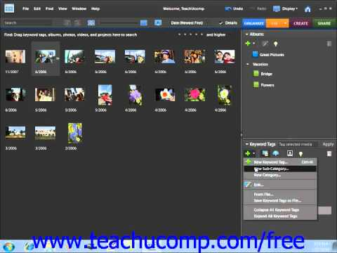 Photoshop Elements 9.0 Tutorial Creating New Tag Categories Adobe Training Lesson 2.13