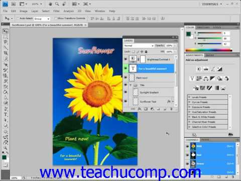 Photoshop Tutorial Adjustment Layers and Fill Layers Adobe Training Lesson 10.2