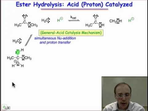 Specific versus General Acid Catalysis