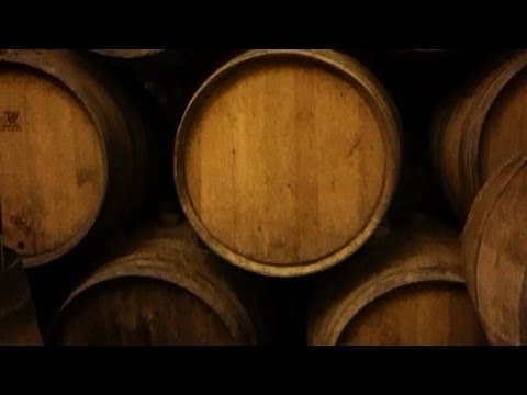 Tuscan Wine Part 1 || KIN STORY #54