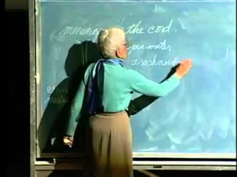 Saylor BIO302: Spinal Cord and Nerves Lecture 26