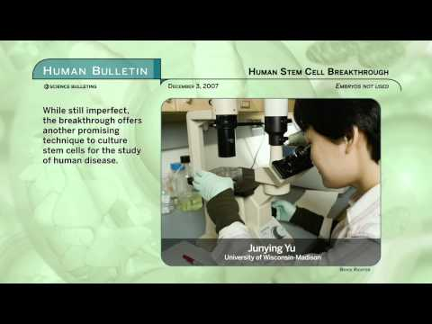 Science Bulletins: Human Stems Cell Breakthrough