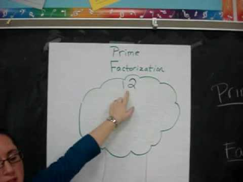 Prime Factorization Tree