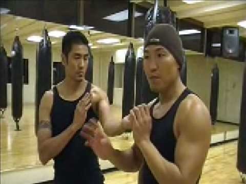 Wing Chun - Straight Punch (basics)