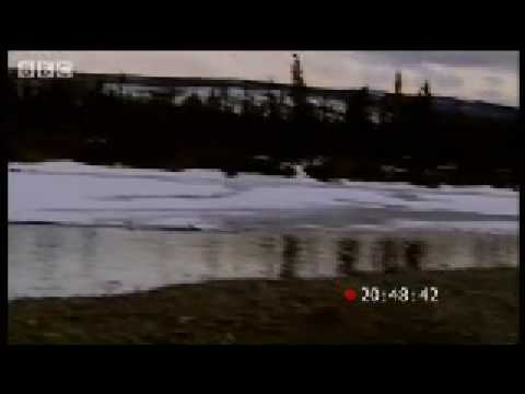 Sleep deprivation - Ross Kemp in Alaska - BBC