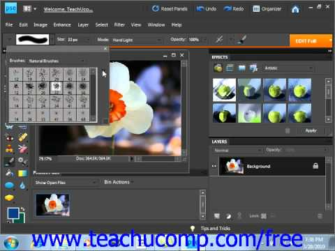 Photoshop Elements 9.0 Tutorial Using the Brush Preset Picker Adobe Training Lesson 7.1
