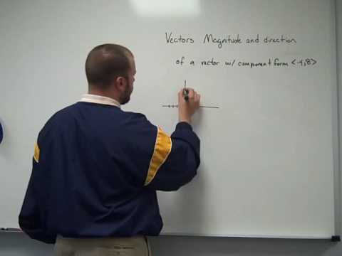 Vectors Magnitude and Direction