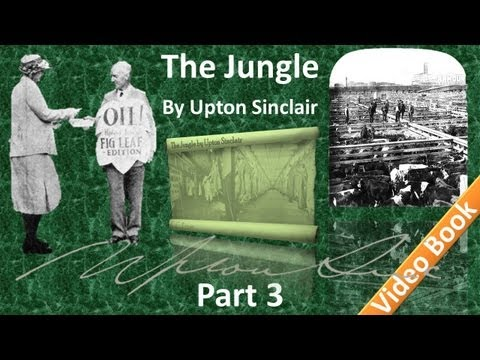 Part 3 - The Jungle Audiobook by Upton Sinclair (Chs 08-12)