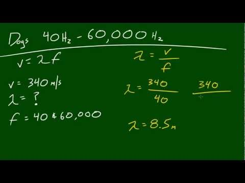 Physics Lecture - 43 - Frequency Range for Dogs