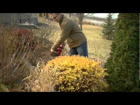 Overview of the Toro 24 Volt Cordless Hedge Trimmer Which Will Make Lawn Care Easier   - The Home De