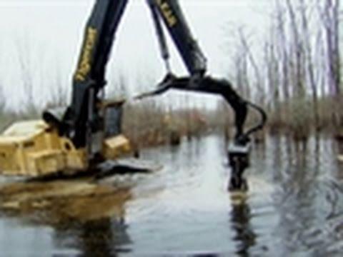 Swamp Loggers - Loggers vs. Beavers
