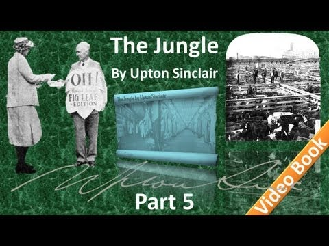 Part 5 - The Jungle Audiobook by Upton Sinclair (Chs 18-22)