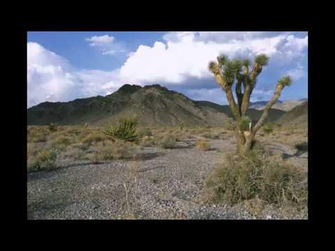 Water in the Desert.avi