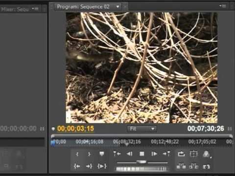 Using Adobe Premiere Pro - The Basics