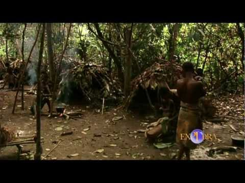The Religious Rituals of the Pygmies