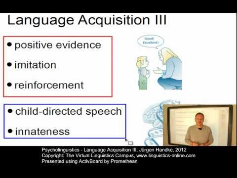 Psycholinguistics - Language Acquisition III