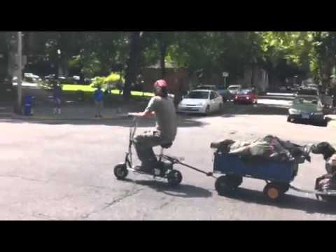 Scooter towing a dog in Portland, Oregon