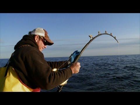 Wicked Tuna - Biggest Fish of the Year