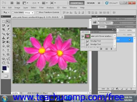 Photoshop CS5 Tutorial Using the History Brush Adobe Training Lesson 5.10