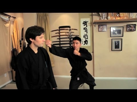 Tai Sabaki and Zan Shin (Evasion and Awareness) | Ninjutsu Techniques
