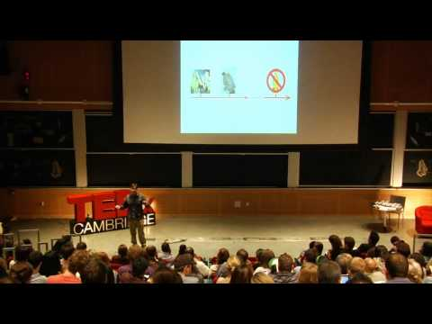 TEDxCambridge: Don Katz on the origins of taste