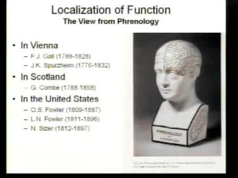 Saylor PSYCH101: Biological Bases of Mind and Behavior II