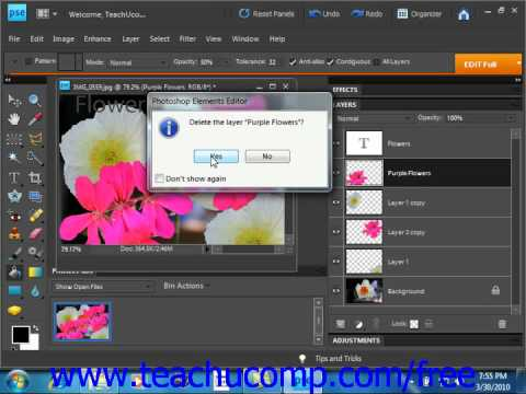 Photoshop Elements 9.0 Tutorial Common Layer Management Tasks Adobe Training Lesson 10.7