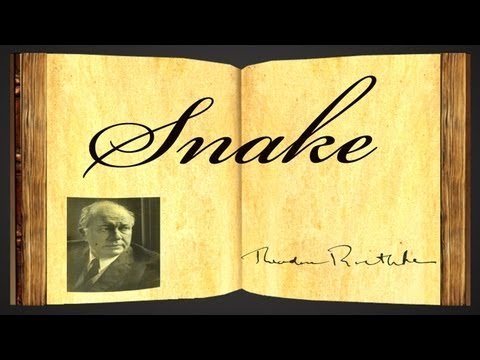 Pearls Of Wisdom - Snake by Theodore Roethke - Poetry Reading