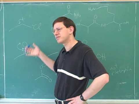 Organic chemistry: Amino acids and peptides (22)