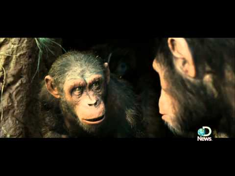 Rise of the Planet of the Apes' Serkis Becomes an Ape