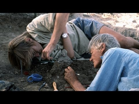 National Geographic Live! - Meave Leakey: Piecing Together Human Ancestors