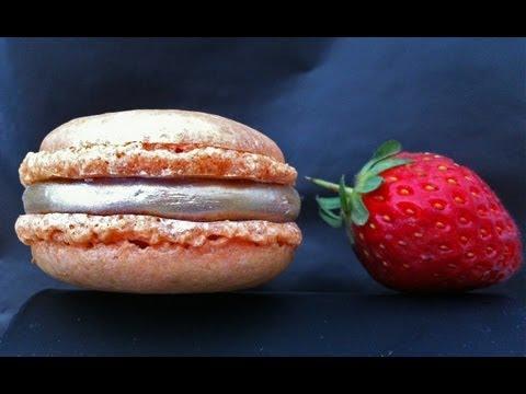 Nut Free Macaron Recipe - by Ann Reardon How to Cook That Ep040